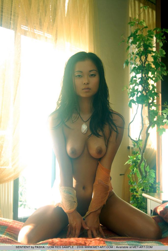 Art asian viky met