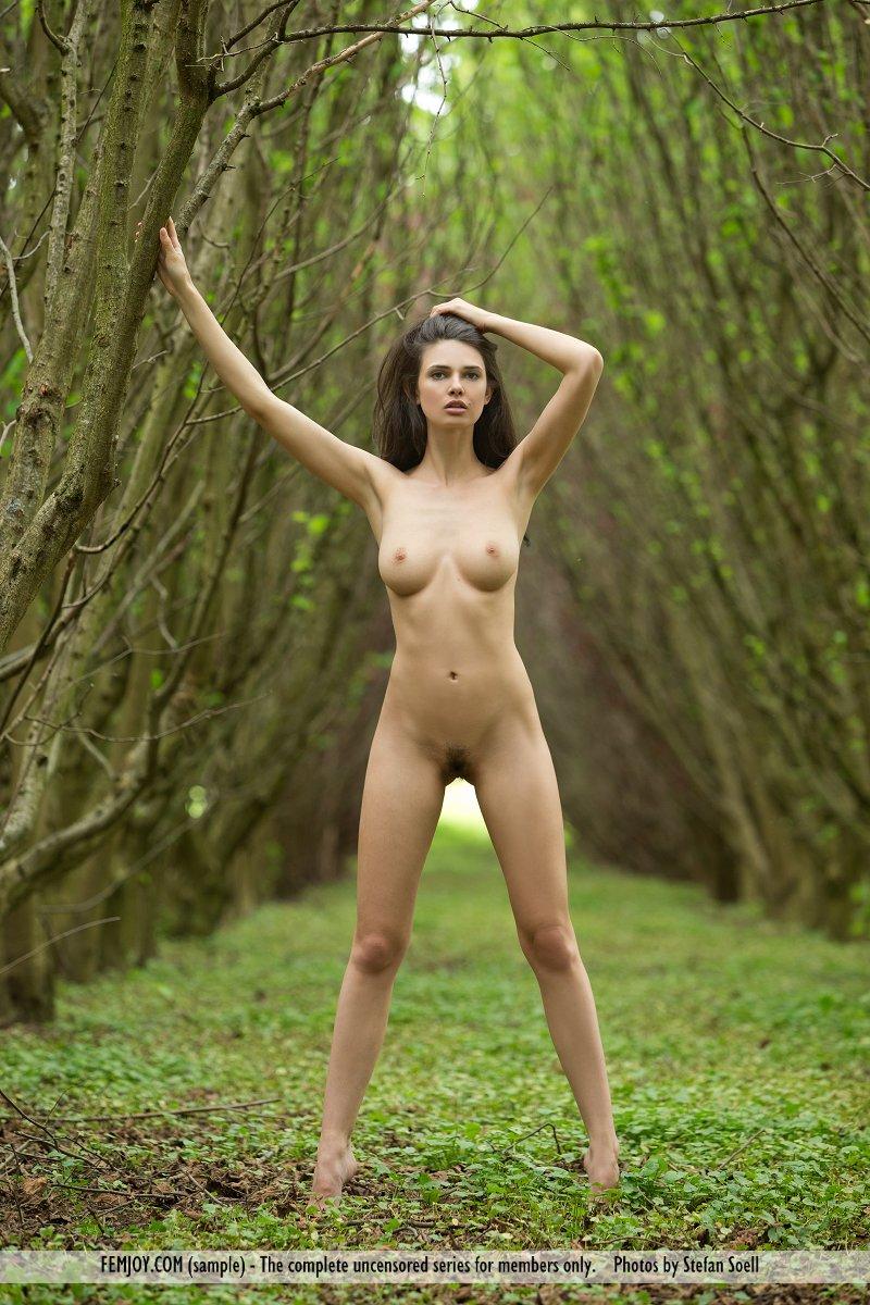 Nude Tv Show Porn