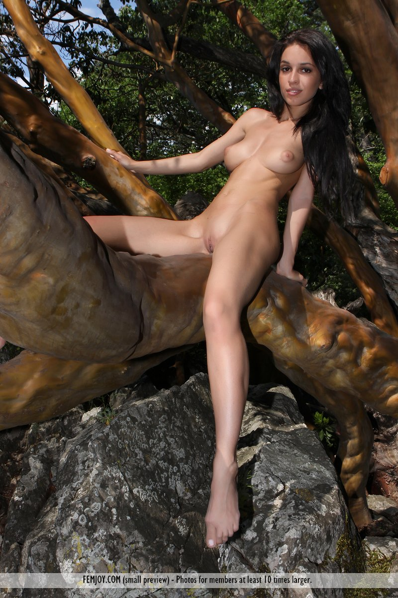 sexy-women-naked-in-a-tree-stormy-daniels-lesbian-sex