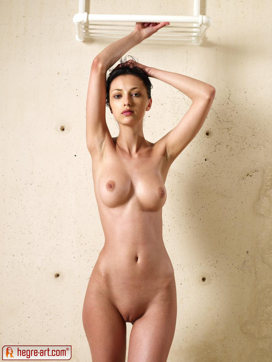 Shall american apparel nude hegre all not