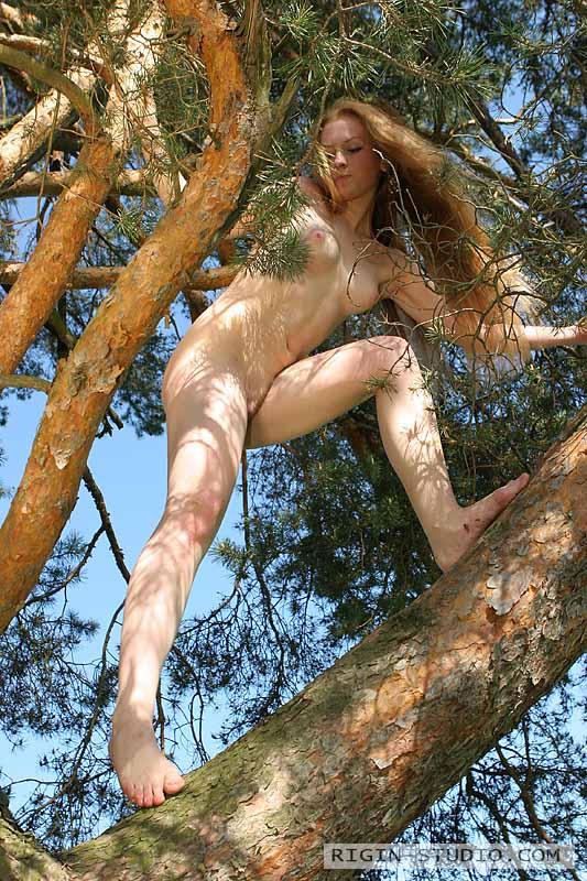 Nude girl in tree — img 12